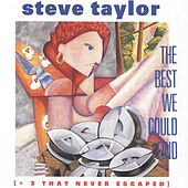 The Best We Could Find by Steve Taylor