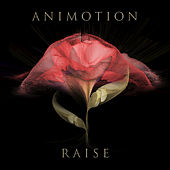 Raise Your Expectations von Animotion