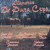 Llaneros de Pura Cepa de Various Artists