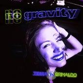 No Gravity (The Remixes) de Tessa