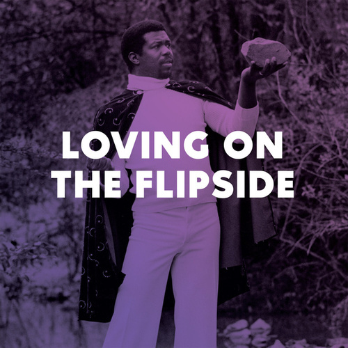 Loving on the Flipside by Various Artists