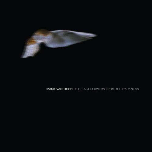 The Last Flowers from the Darkness by Mark Van Hoen