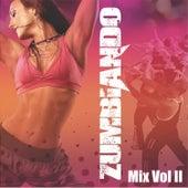 Zumbiando Mix Vol. 2 de Various Artists