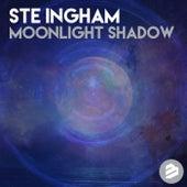 Moonlight Shadow de Ste Ingham