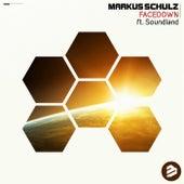 Facedown de Markus Schulz