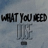 What You Need by Dose