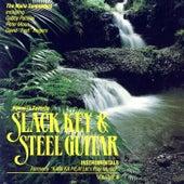 Slack Key & Steel Guitar Instrumentals, Volume II by Maile Serenaders