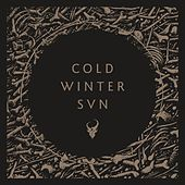 Cold Winter Sun von Demon Hunter