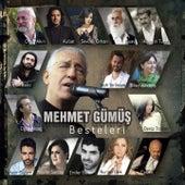 Mehmet Gümüş Besteleri von Various Artists