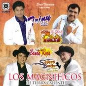 Los Magníficos de Tierra Caliente (Serie Titanium) by Various Artists