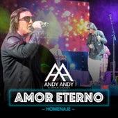 Amor Eterno (Homenaje Version Bachata) de Andy Andy