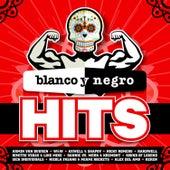 Blanco y Negro Hits de Various Artists
