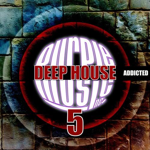 Deep House Addicted, Vol. 5 von Various Artists