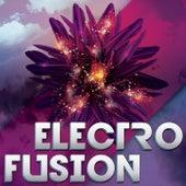 Electro Fusion von Various Artists