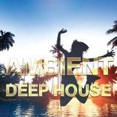 Ambient Deep House - 2016, Vol. 2 von Various Artists