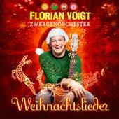 Weihnachtslieder von Florian Voigt und das Zwergenorchester