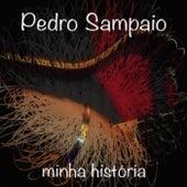 Minha História de Pedro Sampaio