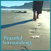 Peaceful Surroundings de Various Artists