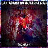 La Habana No Aguanta Mas de Big Naimi
