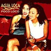 Poco Loco by Agua Loca