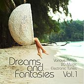 Dreams and Fantasies (20 Magic Electronic Tunes), Vol. 1 by Various Artists