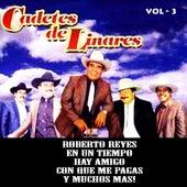 Vol. 3 by Los Cadetes De Linares