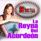La Reyna Del Acordeon by Priscila Y Sus Balas De Plata