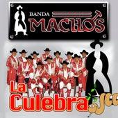 La Culebra by Banda Machos