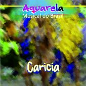 Aquarela Musical do Brazil: Carícia by Various Artists