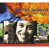 Patience Pays by Rachel Sedacca