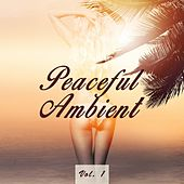 Peaceful Ambient, Vol. 1 by Various Artists