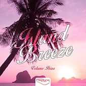 Island Breeze, Vol. 1 by Various Artists
