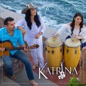 A Contraluz von Katrina