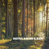 Restful Nature & Rain by Various Artists