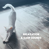 Relaxation & Sleep Sounds by Various Artists