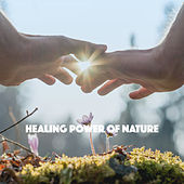 Healing Power of Nature by Various Artists