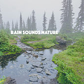 Rain Sounds Nature by Various Artists