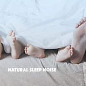 Natural Sleep Noise by Various Artists