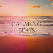 Calming Beats, Vol. 2 (Finest In Chill Out & Ambient Music) by Various Artists