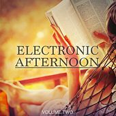 Electronic Afternoon, Vol. 2 (30 Wonderful Electronic Moments) de Various Artists