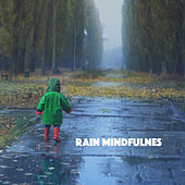 Rain Mindfulnes by Various Artists