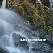 Rain Sound Sleep by Various Artists