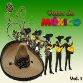 Voces de México, Vol. 1 by Various Artists