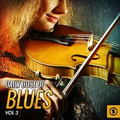 Daily Dose of Blues, Vol. 3 von Various Artists