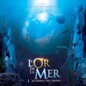 L'or de la mer (L'alchimie des ondes) by Various Artists
