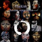 Aucune consolation de Hakim