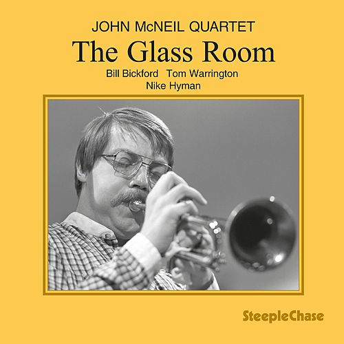 The Glass Room by John McNeil