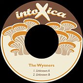 Unknown by Wynners