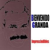 35 Éxitos en Español by Various Artists