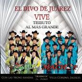 Juan Gabriel Vive - Tributo al Más Grande de Various Artists